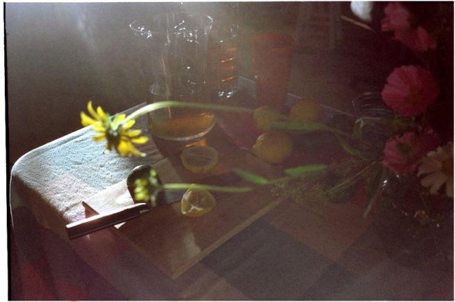 barn_flowers