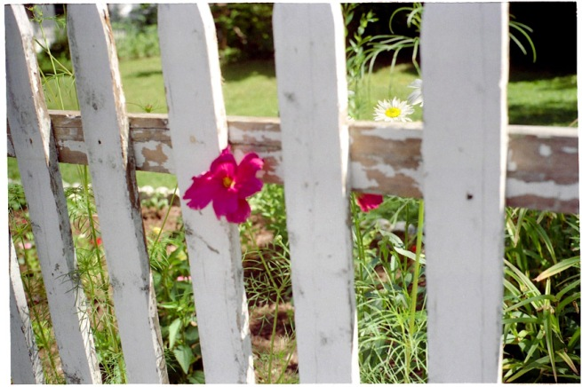last_fence